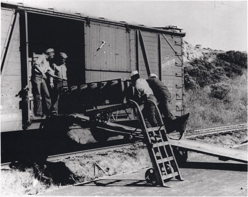 Black sailors unloading munitions from boxcars at Port Chicago circa 1944.